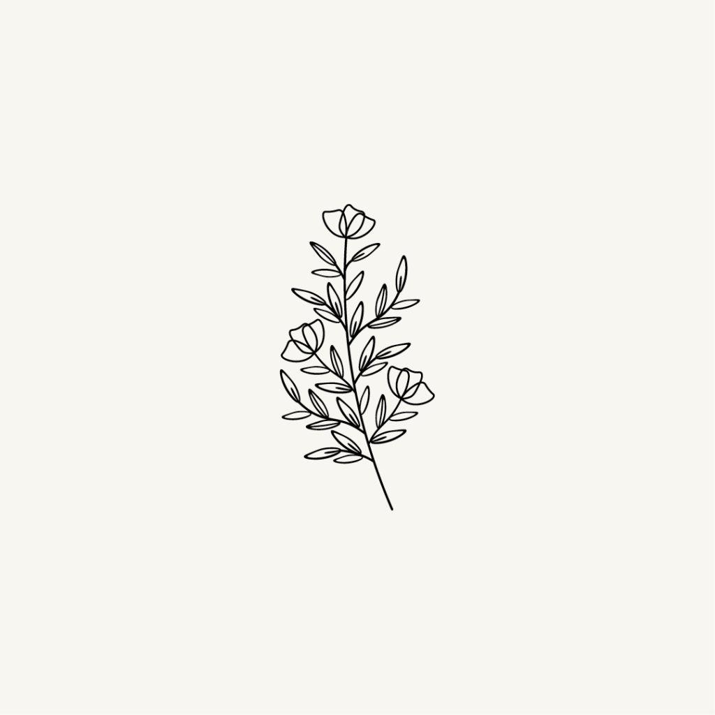 Projet graphique affiche décorative illustration de plante